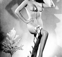 Merry Christmas, vintage nude
