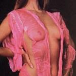 Flimsy Pink Lingerie