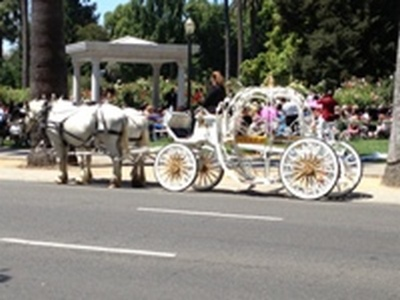 Cinderella carriage at Sacramento Rose Garden