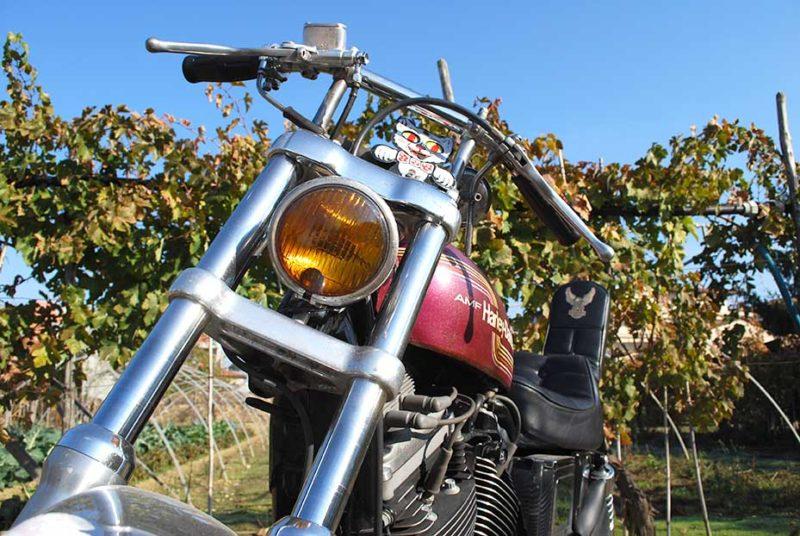 Harley-Davidson Sportster Sport 1200