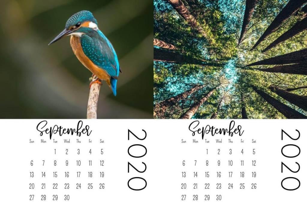 project life mini calendars