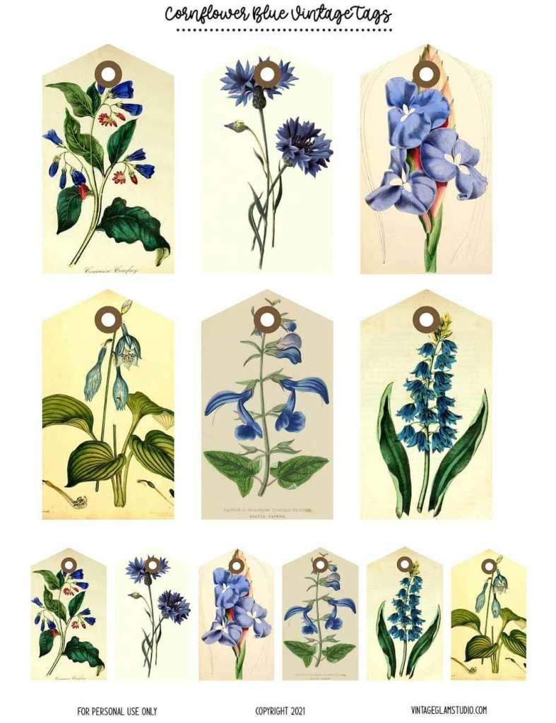 vintage botanical tags