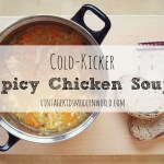 Cold-Kicker Spicy Chicken Soup