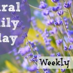 Natural Family Fridays :: September 12, 2014