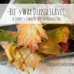 Bee's Wax Dipped Leaves :: A Simple + Colorful Way To Preserve Fall