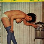 Silk Stockings magazine (UK)