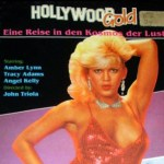Love Probe (1987) (USA) [Vintage Porn Movie] [Download]
