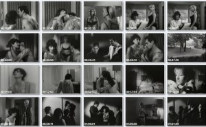The Sex Cycle (1967) (Rare) (USA) (Softcore) [Download]