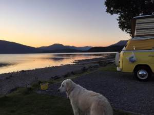 Blondie at Loch Lomond by Bex Goodwin Vickers