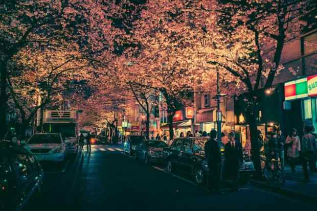 Masashi Wakui Japon photographie 6