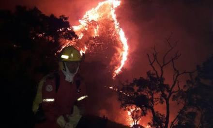 AUDIO | Grande incendio forestal en zona boscosa de Paz De Ariporo