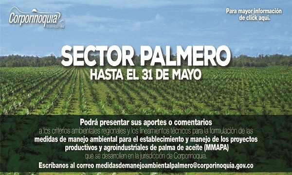 Preparan Resolución para establecer medidas de manejo ambiental para el sector palmero.