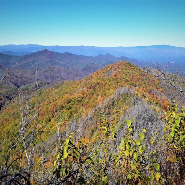 Hiking the Appalachian Trail to Wesser Bald
