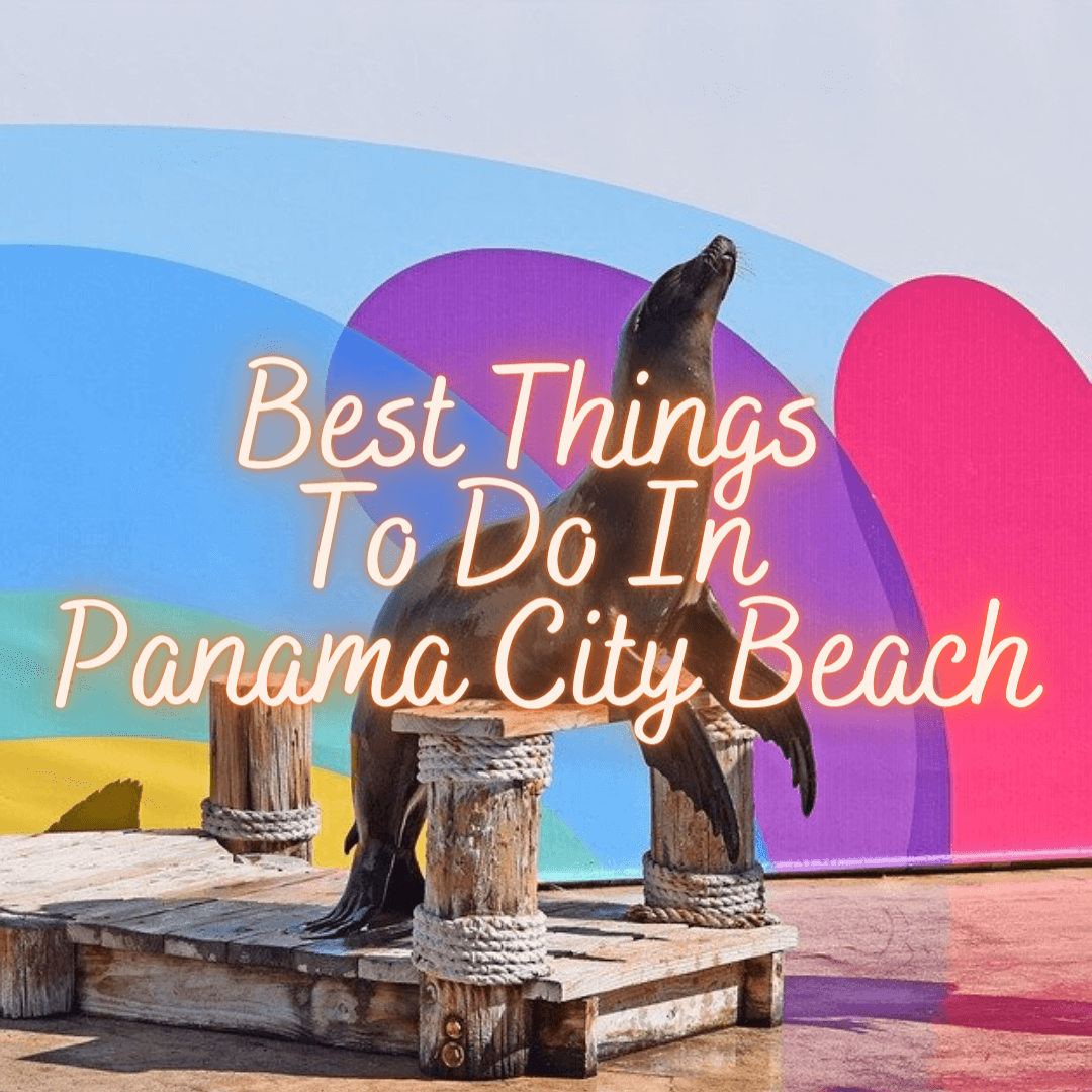 Best Things to Do in Panama City Beach, Florida