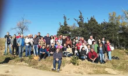 Млади социалисти посадиха нови дръвчета край Ракитово