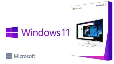 Windows 11 ISO 64 bits