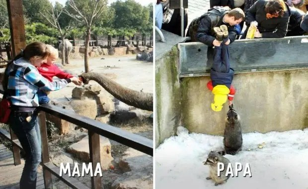 mama-papa-diferencias-divertidas-zoo