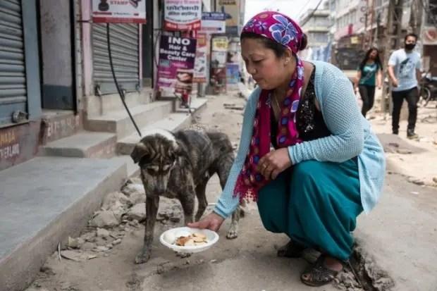 mujer-ayuda-perros-nepal-terremoto-voluntarios