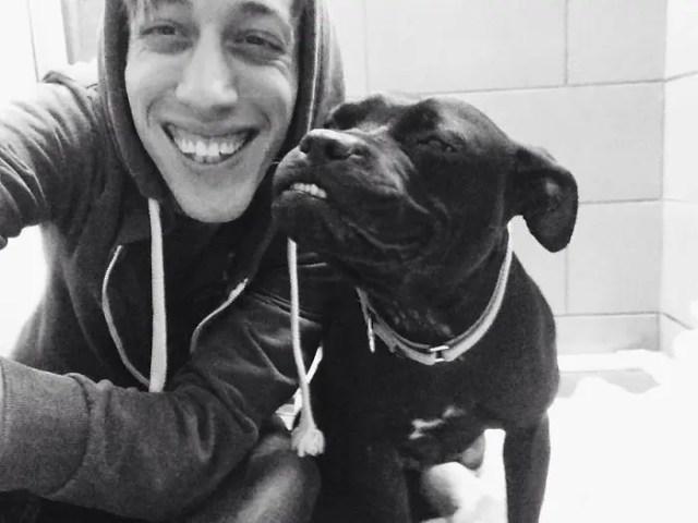 sonrisas de perros 8