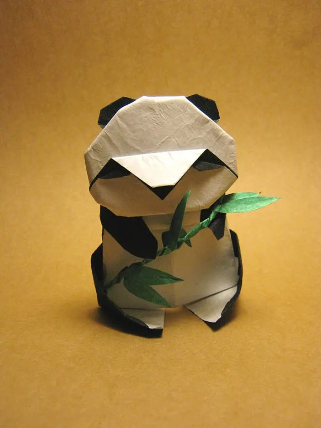 dia de origami 13