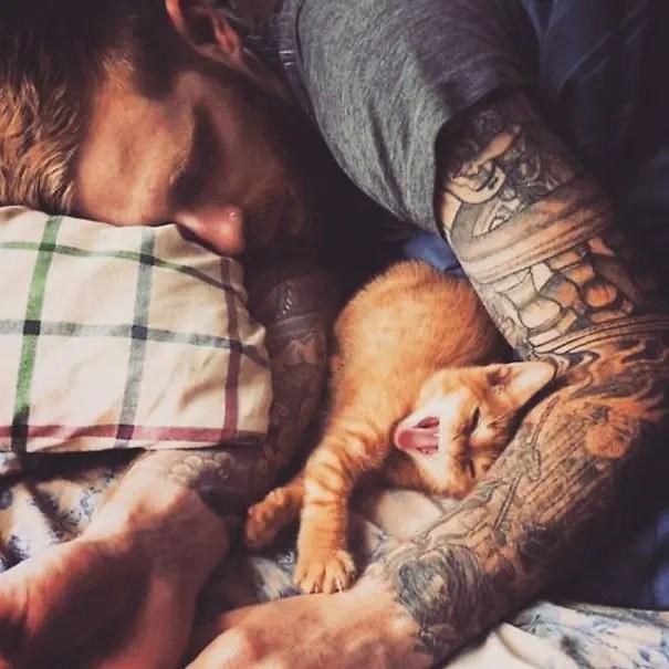 chicos bonitos con gatitos 2