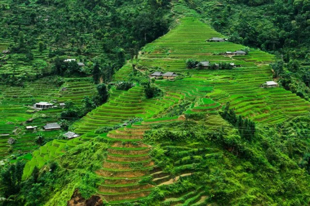 contrastes-paisajes-vietnam-9