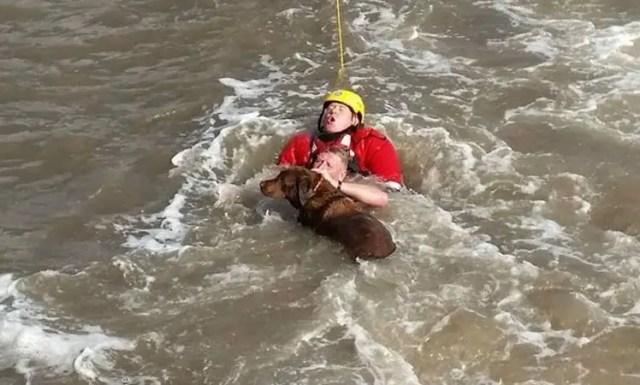 hombre salta a turbulentas aguas 1