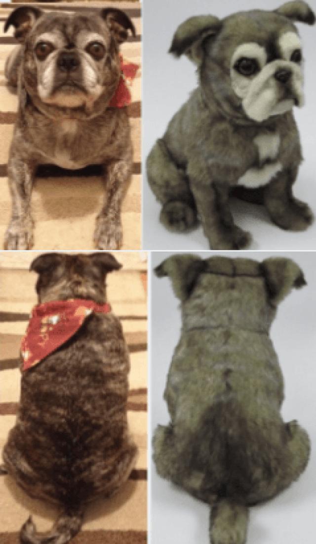 perritos-clonados-en-peluche-9