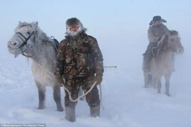 caballos-yakutos-11