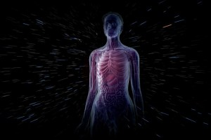 interesting facts of human body