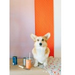 Stylish Wallpapers