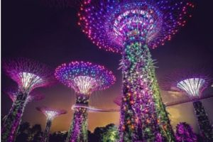 Local Singapore Attraction Ideas