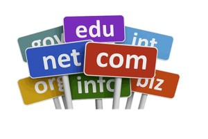 Finding the Most Suitable Domain