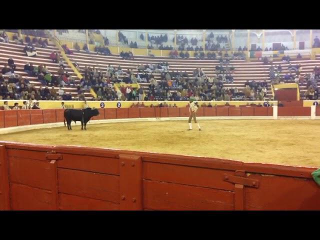2ª tentativa de Fernando Quintella na Moita