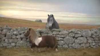 Moon Walking Pony Commercial