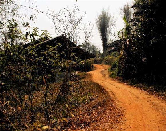 Chiang Mai – Filler, Kaplanlar, Kabileler