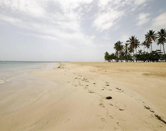 Dominik'te Tarzancılık