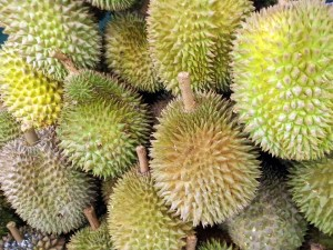 durian-300x225