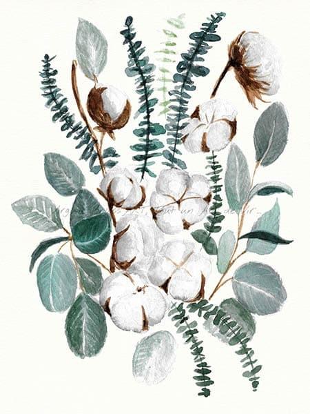 Peinture à l'aquarelle d'un bouqet d boules de coton et d'eucalyptus réalisé par l'artiste peintre Virginie Brassart