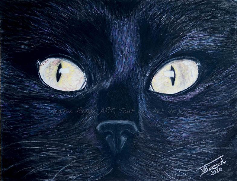 Dessin aux pastels secs de yeux de chat noir en gros plan réalisé par l'artiste peintre Virginie Brassart