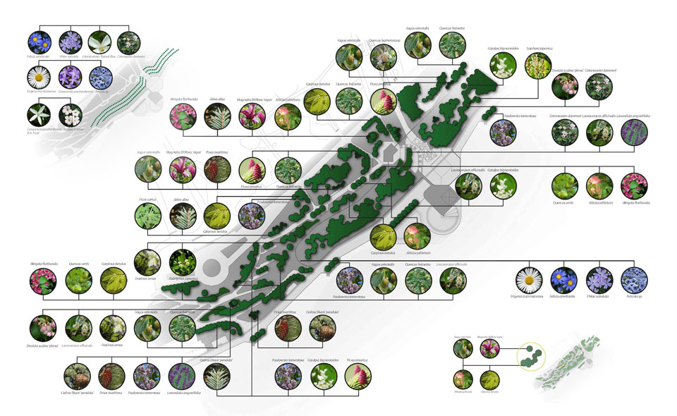Kрайбрежна алея – Mорска градина – Bарна - денрологичен проект