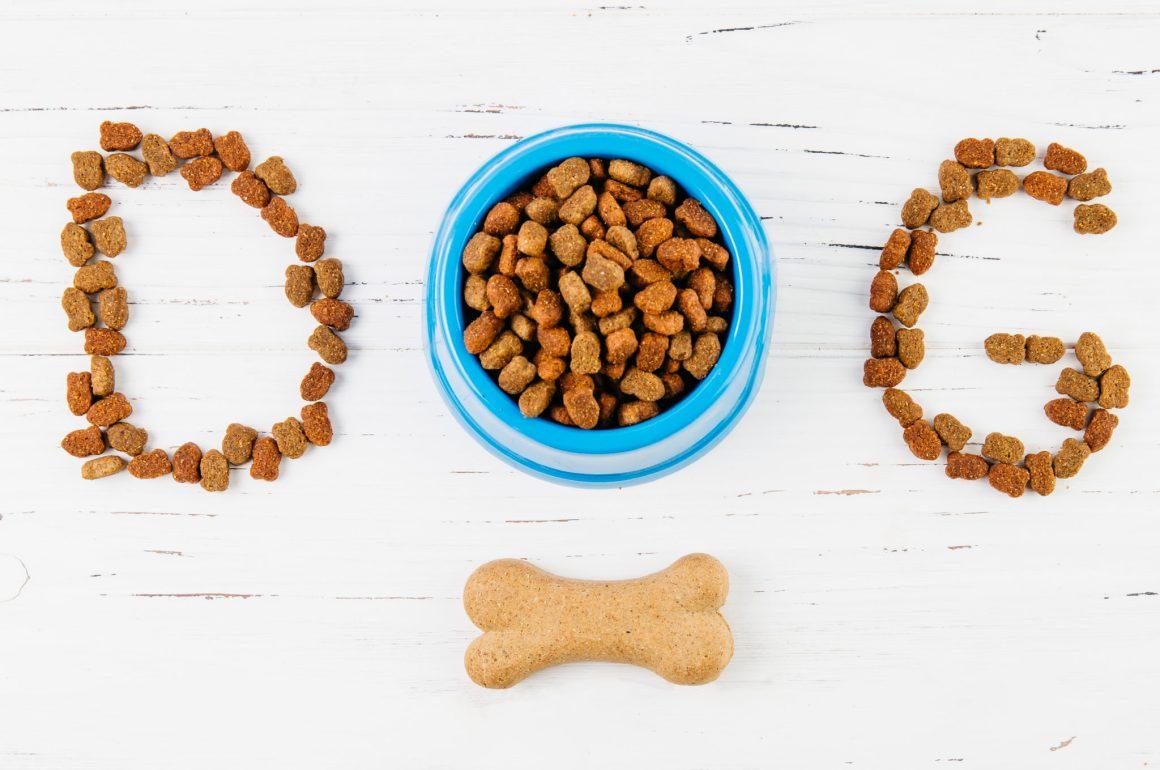 cibo per cani