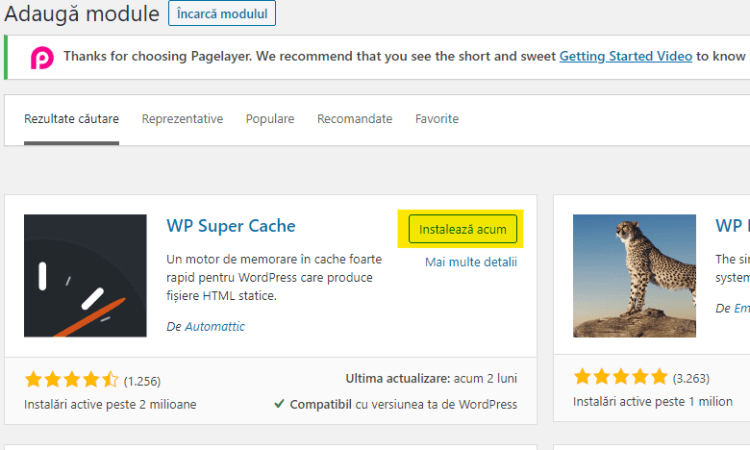 module wordpress