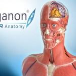 3D Organon VR Anatomy (Oculus Rift)