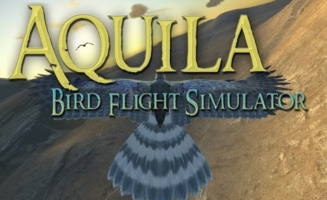 Aquila Bird Flight Simulator (Oculus Rift)