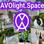 AVOlight.Space (Oculus Rift)