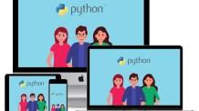 Curso Python Completo: Do Júnior ao Sênior vai mudar a sua carreira profissional!