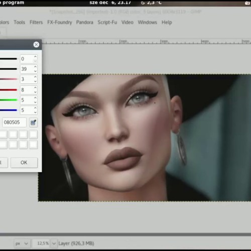 SecondLife Portrait Editing with GIMP