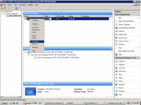 ms windows 2008 hyper-v take snapshot
