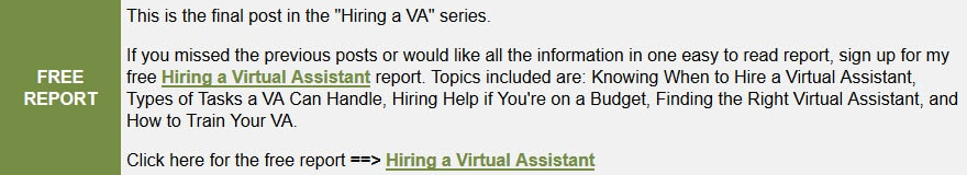 Free Hiring a Virtual Assistant Report